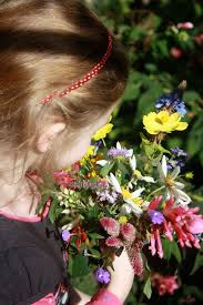 Organic Vegetable Gardening Annette Mcfarlane by Gardening With Children U2013 Harvest Time Claire Bickle