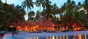 jean michel cousteau resort fiji the official website of