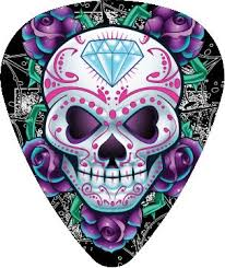 32 best guitar picks images on pinterest guitar picks skulls