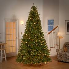 9 foot christmas tree beachcrest home spruce artificial christmas tree with clear lights