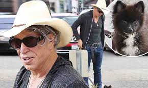 Mickey Rourke News Newslocker - mickey rourke finds a tiny new puppy after loss of his beloved