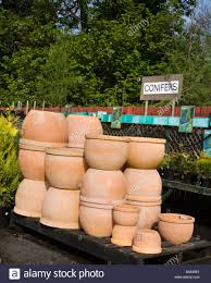 Pots For Sale Articles With Large Terracotta Pots For Sale Tag Terracotta Pot