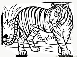 Tiger New 15 Coloring Page Free Tiger Coloring Pages Coloring Pages Tiger