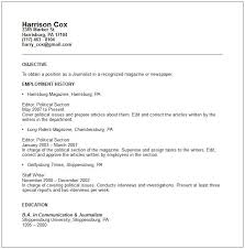 Resume Sample Objective Statement by Resume Objective Example Amethyst Purple Stallion Resume Template