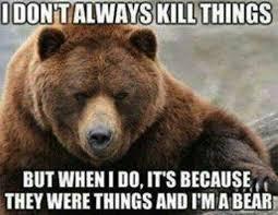 Bear Cocaine Meme - 179 best universal truths images on pinterest funny stuff funny