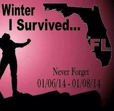 Florida Winter Meme - punta gorda real estate