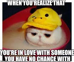 Heart Break Memes - sad cat imgflip