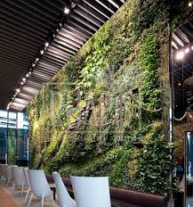 interior green walls first vertical green wall in slovakia
