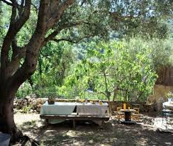 chambre d hote haute corse chez evelyne chambre d hôtes avec jardin à pigna
