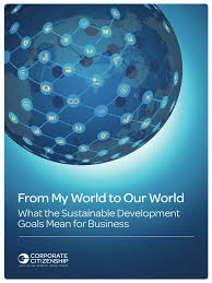 from my world to our world what the sdgs mean for business