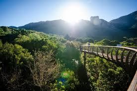 Kirstenbosch Botanical Gardens Kirstenbosch Botanical Garden The Official Guide Cape Town Tourism