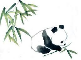 drawn panda bamboo pencil and in color drawn panda bamboo