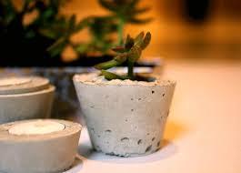 easy diy mini concrete planters for succulents