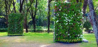 How To Plant Vertical Garden - vertical gardening in small spaces bombay outdoors