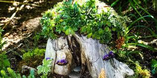 Garden Pics Ideas 15 Diy Garden Ideas How To Make A Miniature Garden