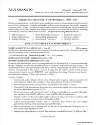 senior executive resume exles senior executive resume exles geminifm tk