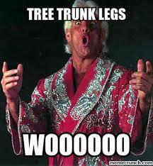Tree Trunks Meme - image jpg w 400 c 1