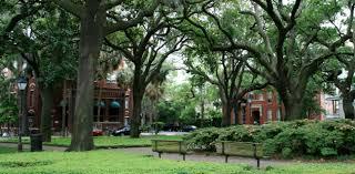 Savannah Association For The Blind Savannah City Of Parks And Squares Landscape Noteslandscape Notes