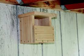 Carolina House Plans Carolina Wren Nest Box Quarto Homes