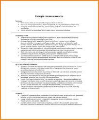 resume professional summary sample amitdhull co