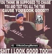 Chase You Meme - mula gang check much jpeg check too many watermarks check