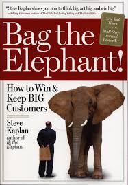 bag the elephant steve kaplan 9780761145240 amazon com books