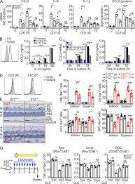 kennedy compound floor plan il 33 amplifies an innate immune response in the degenerating