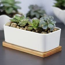 the advantages in using white ceramic planter decor on the line