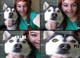 Kill Me Meme - kill me a classic meme gallery