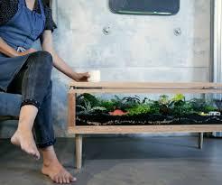 terrarium table i want one terrarium table for the home pinterest terraria