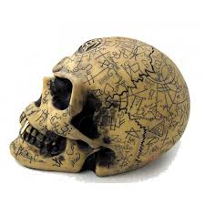 omega alchemists skull resin statue with mystical symbols and gold