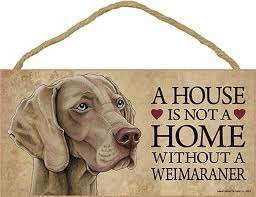 weimaraner wood sign wall wall plaque photo display 5 x 10