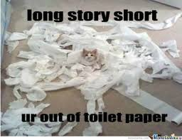 Newspaper Cat Meme - toilet paper by velid meme center