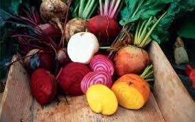 recette de cuisine simple avec des l馮umes cuisiner les l馮umes d hiver 28 images cuisiner les fruits et l