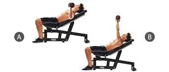 Flat Bench Press Dumbbell Exercises U2013 Pns