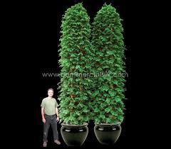 outdoor artificial cedar column privacy screens silk cedar