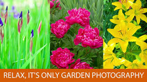 relax it u0027s only garden photography youtube