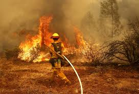 Wildfire Social Media App by On The Frontline Of The Flames What It U0027s Like Photographing A