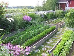 beautiful raised vegetable gardens uuotjmre decorating clear