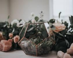 terrarium container etsy