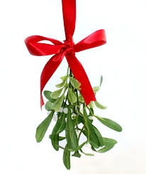 christmas mistletoe pucker up hanging mistletoe