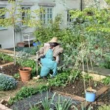 vegetable garden layout zone 8 luxury planning a garden layout