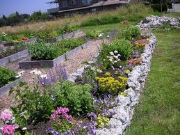 Rock Gardens Images by How To Build A Rock Garden That Bloomin U0027 Garden