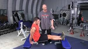 Triceps Bench Dips Bench Dips Compound Exercise For The Triceps U2022 Bodybuilding Wizard