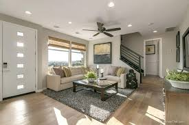 Solid Grey Rug Living Room With Carpet U0026 Hardwood Floors In San Diego Ca