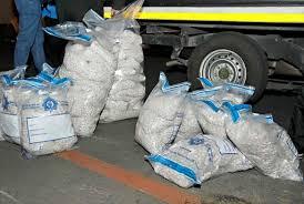 intelligence bureau sa hawks swoop on mandrax dealers in r5 million bust