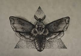 moth pencil and in color moth