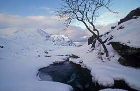 Snow Scotland Snow Of Winter Falls As Arctic Cold Snap Heads For Scotland