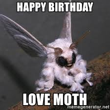 Happy Birthday Love Meme - happy birthday love moth poodle moth meme generator