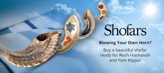shofar trumpet shofars for sale buy a shofar from israel judaica web store